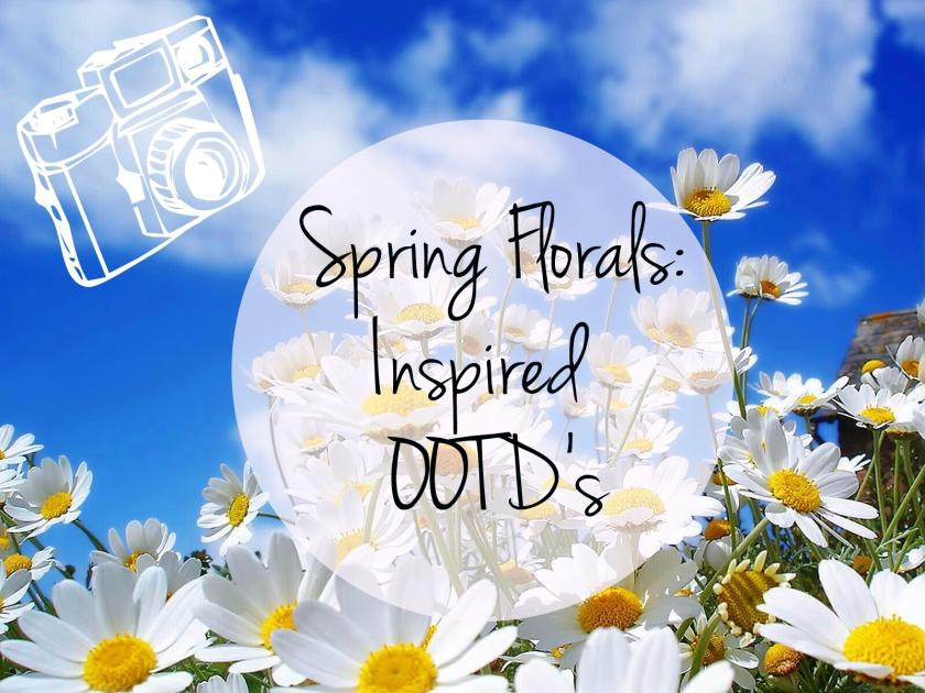 white-spring-flower-in-morning